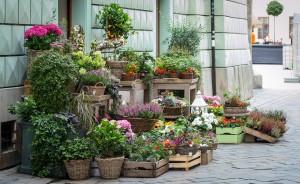 come aprire negozio di fiori